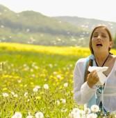 Основні правила боротьби з алергією