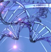 Генетичний аналіз і вагітність