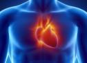 Миготлива аритмія — симптоми, лікування, діагностика