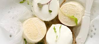 Корисні властивості козячого сиру